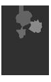 logo_COINs